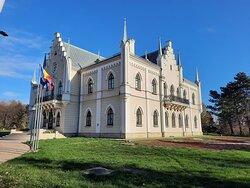 Cuza palace, Ruginoasa