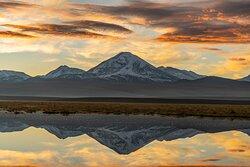 Volcan Paniri Tours