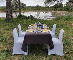 Special 80th birthday breakfast in the bush. Hippo and Crocodile in the dam while we are having breakfast. Where else in the world!