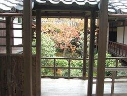 渡り廊下から見る中庭風景