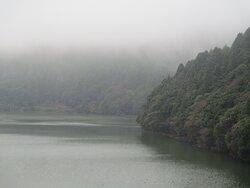 霧にむせぶおしどりの池
