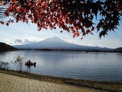河口湖風景