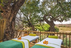 Tree House Surrounded by wilderness and birdsong, a part of Nature, you can choose from a menu of African- signature massages and be pampered with lavish South African products made with the beautiful essences of indigenous plants.