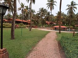 Best in North Goa!