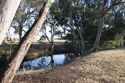The beautiful and peaceful creek which runs through the property.