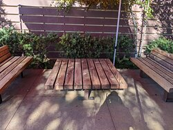 A wooden bench outside the Lazy Dog.