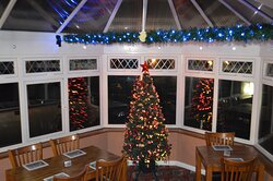 Christmas Tree in the conservatory