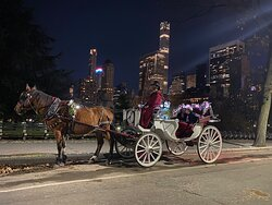 NYC Horse Carriage Rides - Official Central Park Carriage Rides Website