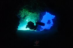 Aldora Divers - Only the best of Cozumel 026