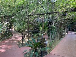 Trail Tales of The Treehouse Resort, Chandwaji