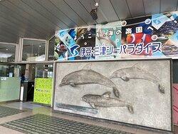 日本で2番目に古い水族館