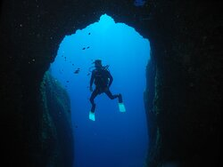 Scuba Diving: Add to your list, and let our expert partnes guide you