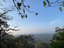 Perfect homestay for Nature lovers