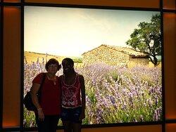 Foto enviada pelo casal Emilio Carlos Vessecchi e Maria Vessecchi - Nova Aliança SP