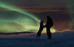 Aurora hunting with Huskies