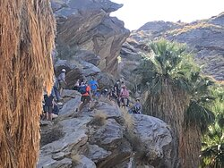 The Indian Canyons Bike and Hike Tour