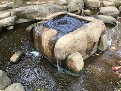 水がこんこんと湧いていました。