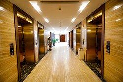 Khu vực thang máy