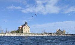 Pilot Island Destroyed by Cormorants in the Porte Du Morte