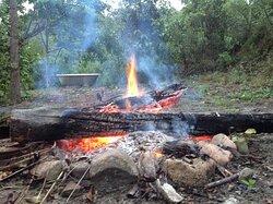 Picnic fire fun