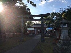 朝陽越しに揖宿神社を見ています。