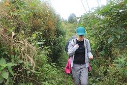 at hiking