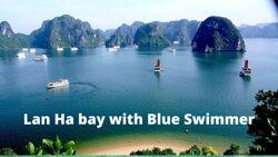 Blue Swimmer Ventures