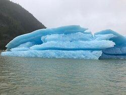 iceberg in Stikine River