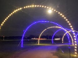 Winter Wonderfest lighted tunnel 1
