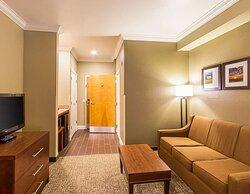 Queen suite with sofa sleeper