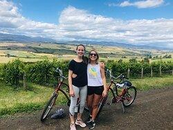 Ride the Vines