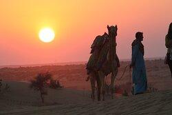 Jaisalmer Rajasthan desert camp camle ride and sun 🌞 set view
