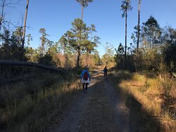 Big Branch Marsh National Wildlife Refuge - 1st typical view  of 2+ miles of the trail to Bayou Lacombe  01 02 21