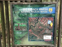 Big Branch Marsh National Wildlife Refuge - trail head signage 01 02 21