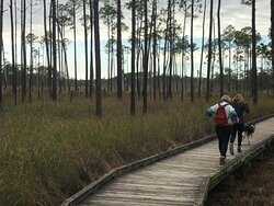 Big Branch Marsh National Wildlife Refuge - 1st Quarter mile of boardwalk through the marsh view one 01 02 21