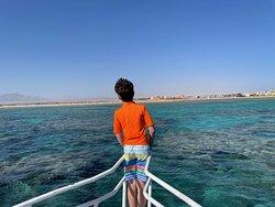 Enjoying the Red Sea