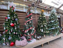 Linvilla Orchards Trees with ornaments for sale in garden center