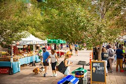Union Station hosts the city's premier Farmers Market on the outdoor Plaza from May through October.