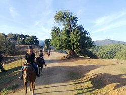 Horse riding river and mountain trails