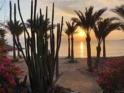Если лететь на отдых в Египет, то только в Brayka Bay