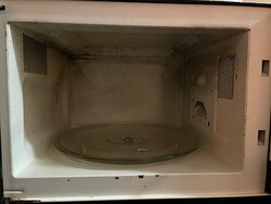 black mold inside the microwave