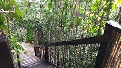 The Berry Suite Private Entrance at Katamah Treasure Beach Jamaica