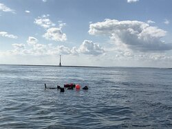 Snorkel and Freediving Boat Trips . We visit sites like the Far Mulberry, Mixon Hole and more.
