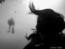 Underwater Shades... #krakendivers #scubadivingcabo #divecabo #scubacabo #cabosanlucas #cabotours #privatetours #tours #bajatours #privateinstructor #privateguide #scuba #scubadiving #diveexpeditions #divetours #diving #whattodoincabo #diveexpeditons #cabopulmo #marinepark #ecofours #travel #oceanexpeditions #underwaterphotographyexpeditions #cabosanlucas #marlinmigration #whalewatching #whaleshark #sealions #underwater #marinelife #scubalovers #scubatravelers #fish #diveclub #seaturtle