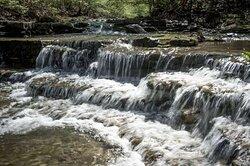 Wyandotte County State Park