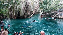 Our Friends from Moscow Having Fun in Kikuletwa Hotspring