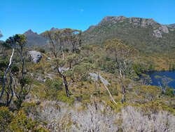 Combine this one with dove lake and wombat pool