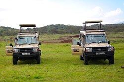 Our 4x4 Safari Jeep