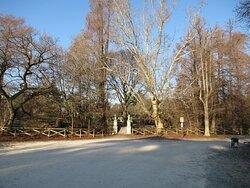 Un angolo del parco
