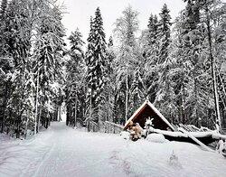 Вотчина карельского Деда Мороза Талвиукко